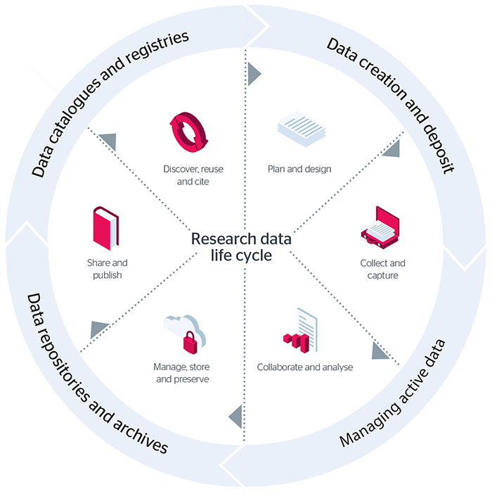 Research Data Management Life Cycle