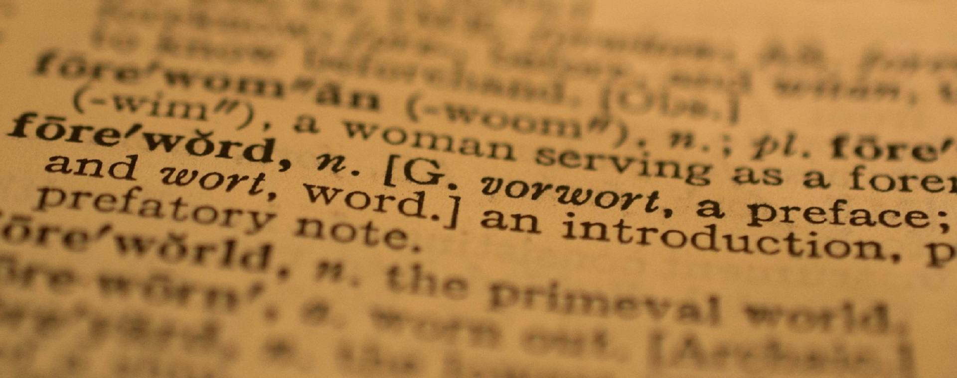 image of dictionary definition for the word