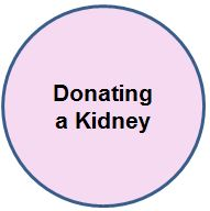 Donating a kidney