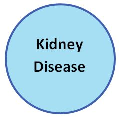 link to Kidney Disease information