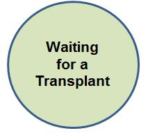 Waiting for transplant