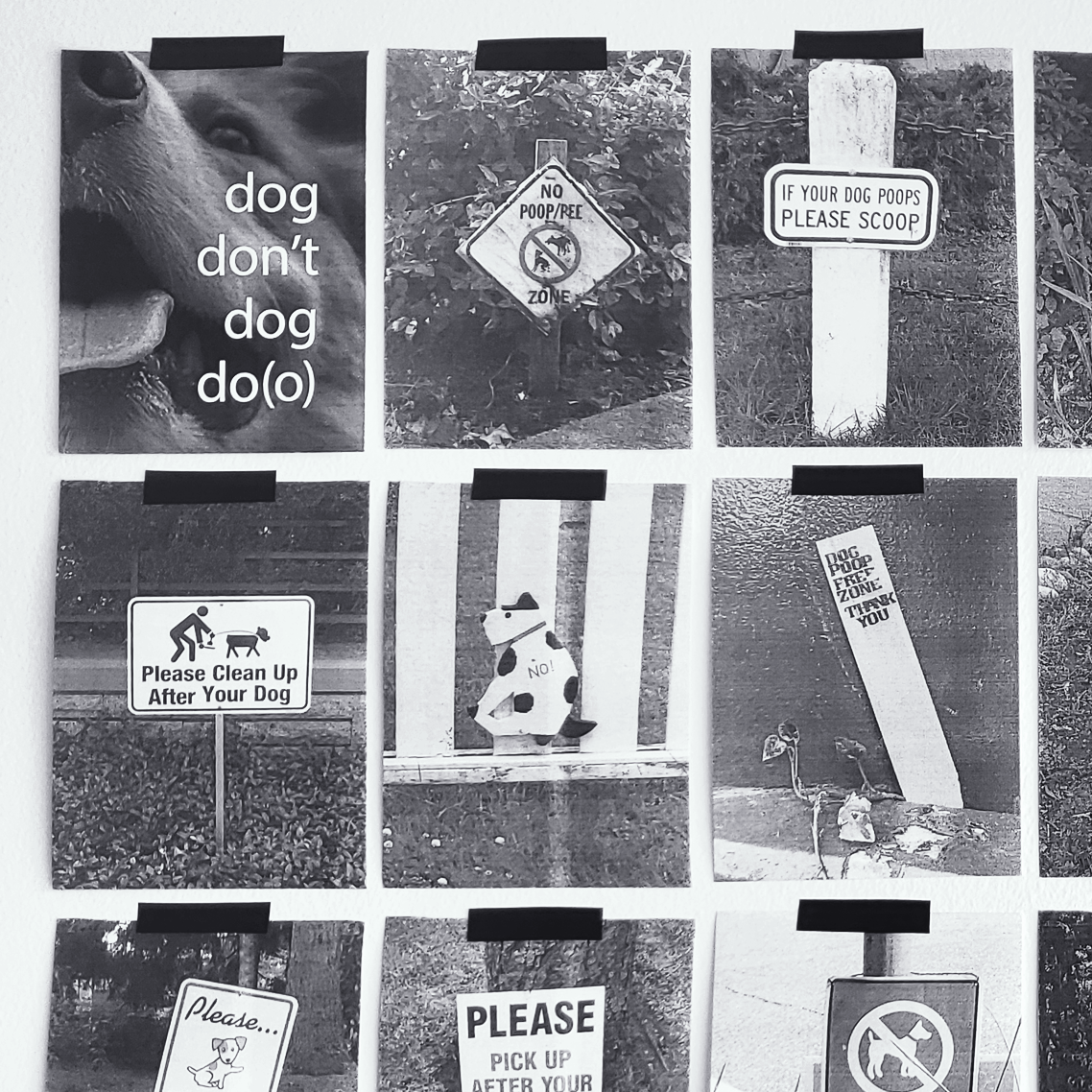 art installation of photographs of anti-dog poo signs