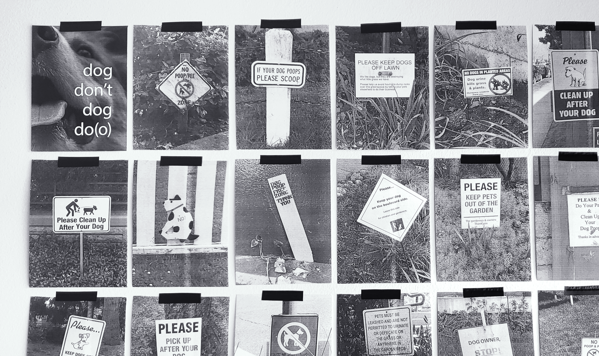 detail shot of dog don't, dog do(o), a series of photographs of anti dog poo signs