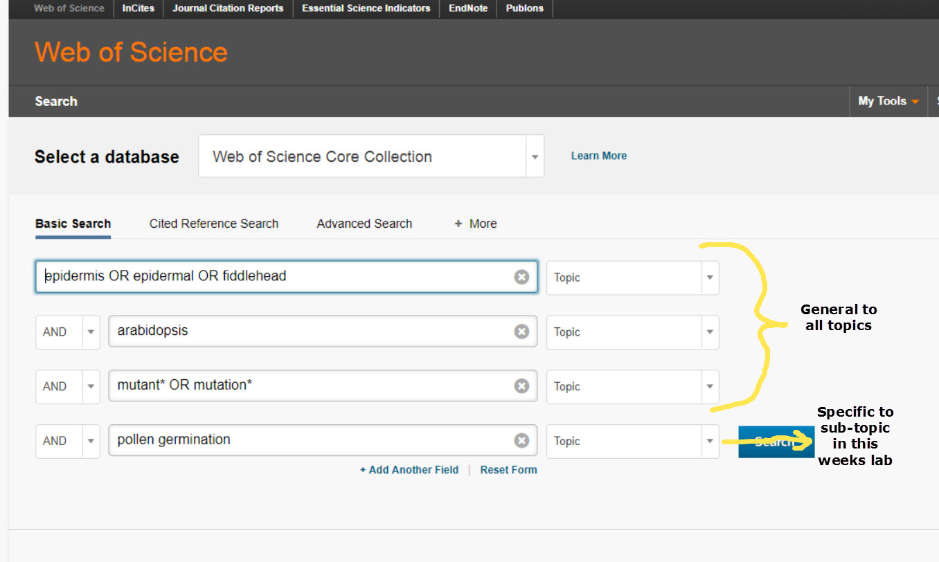 screenshot of web of science search