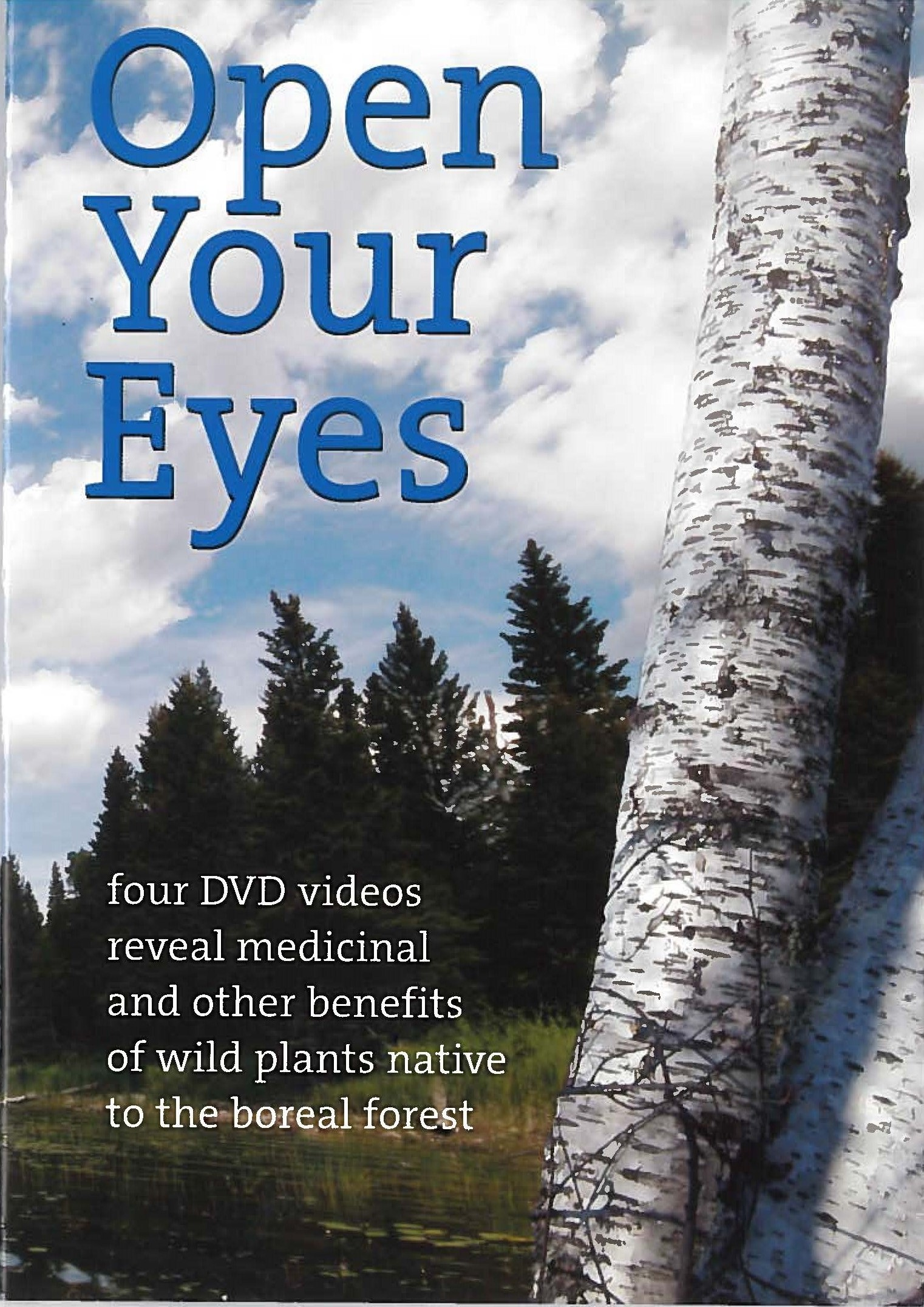 Cover Art for Open Your Eyes DVD
