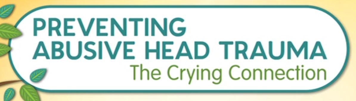 Preventing abusive head trauma (Cover Art)