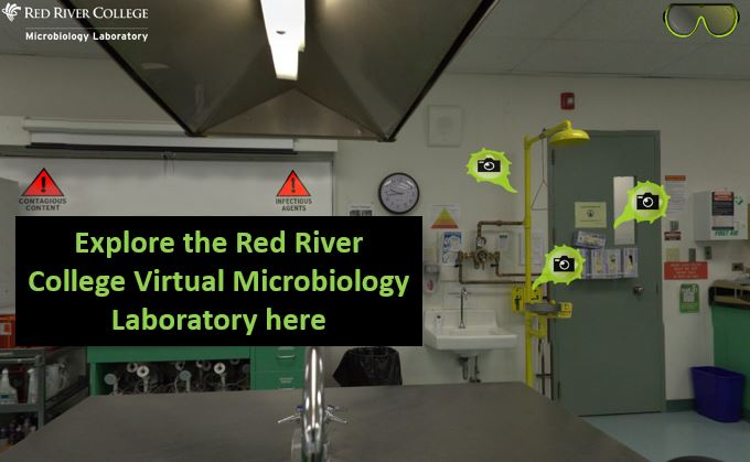Red River College Microbiology Laboratory