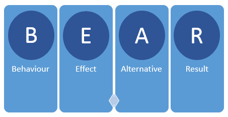 bear model: behaviour, effect alternative, result