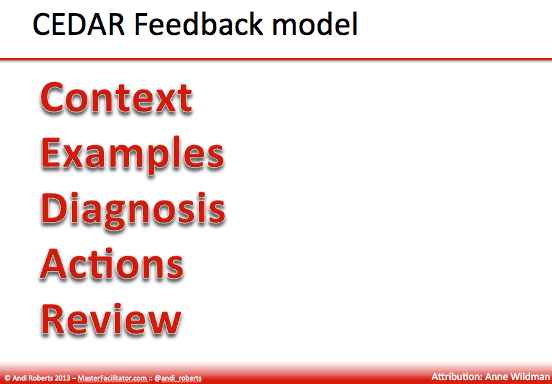 Cedar feedback model: context, examples, diagnosis, actions, review