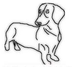 Sketch of a Dachshund dog