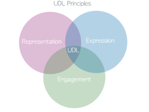 Venn Diagram of the Universal Design for Learning Principles