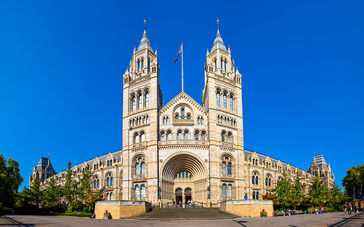 Natural History Museum (Image)