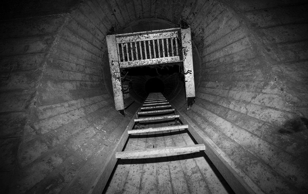 Escape Ladder (Image)
