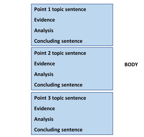 The body paragraphs go in the middle. They each include a topic sentence, evidence, analysis, and concluding sentence.
