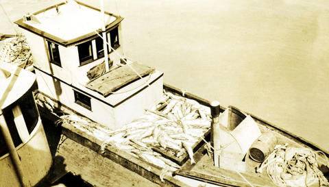 Black and white photo of a fishing boat loaded with fish for the cannery