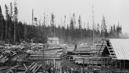 Photograph depicts a man standing on a pile of logs in a sawmill yard, likely near Tabor Lake or Dewey, BC area.