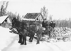 Black and white photo of a horse hauling firewood