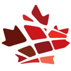 Federation of Black Canadians Logo