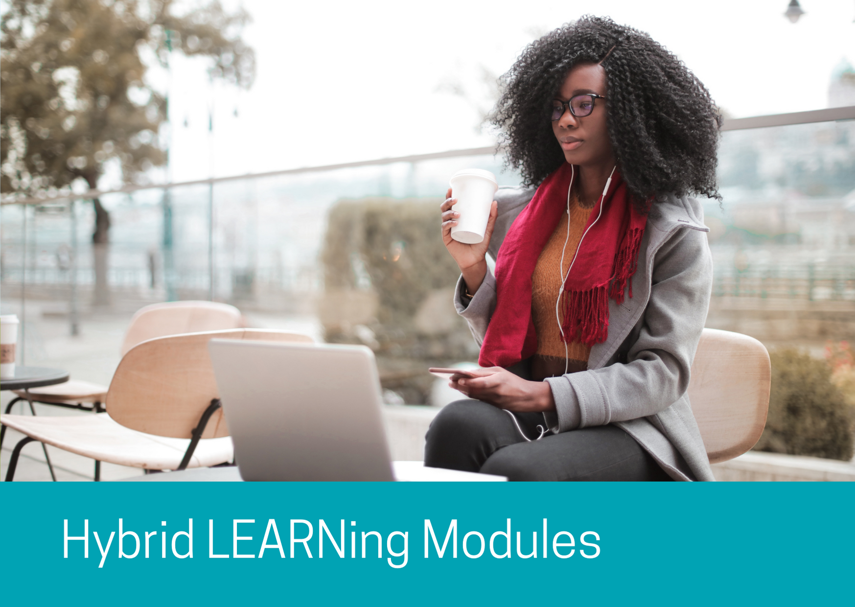 Hybrid Learning Modules