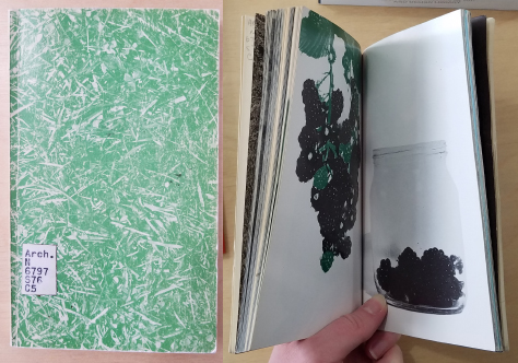 Green and white hatched cover next to an image of inside pages that show blackberries on the plant and in a jar.