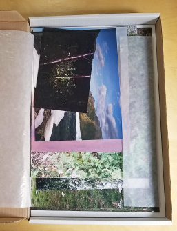 A white cardboard box containing a series of photographs and posters on trees, mountain landscapes, and other aspects of nature.