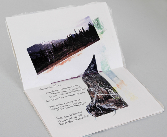 Columbia Icefield artists' book