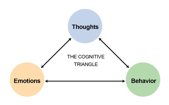 Image of The Cognitive Triangle; Thoughts, emotions, and behaviour.