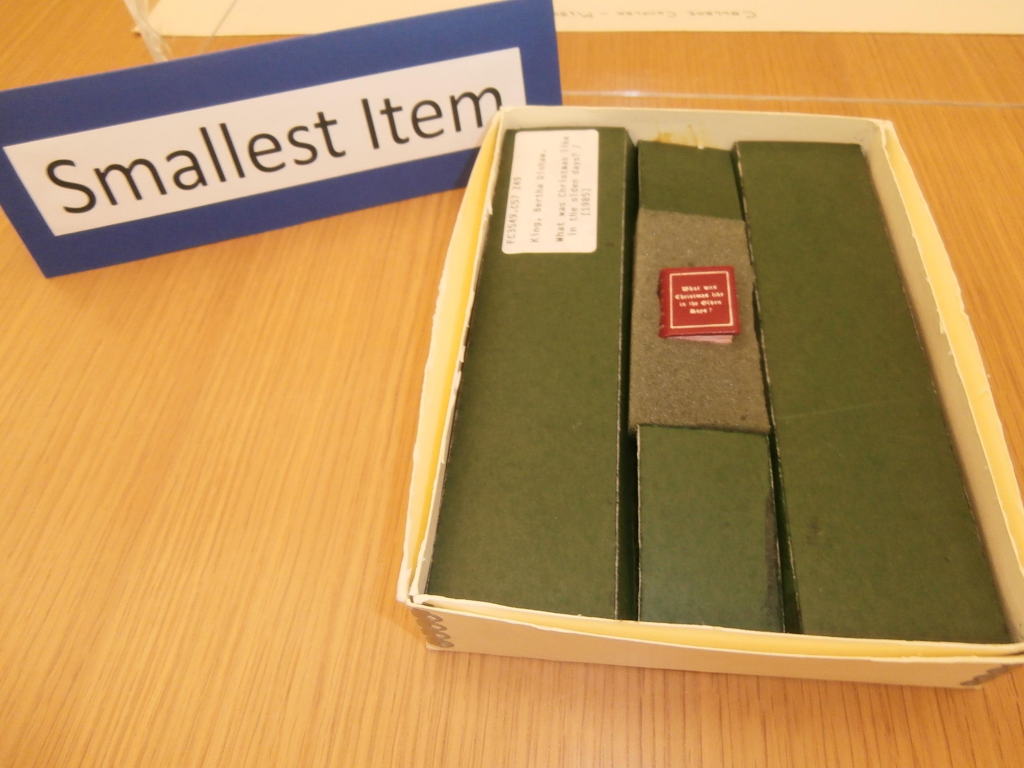 Smallest Item - Book -