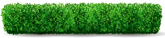 decorative image of hedge