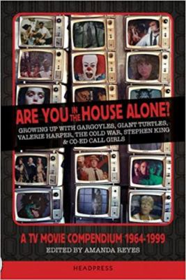 Are You In the House Alone?: Growing Up With Gargoyles, Giant Turtles, Valerie Harper, the Cold War, Stephen King and Co-ed Call Girls; a TV Compendium 1964-1999