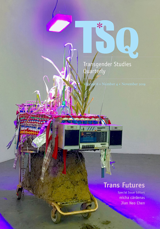 Journal with the title TSQ: Transgender Studies Quarterly. Multicoloured image of shopping cart filled with various items.