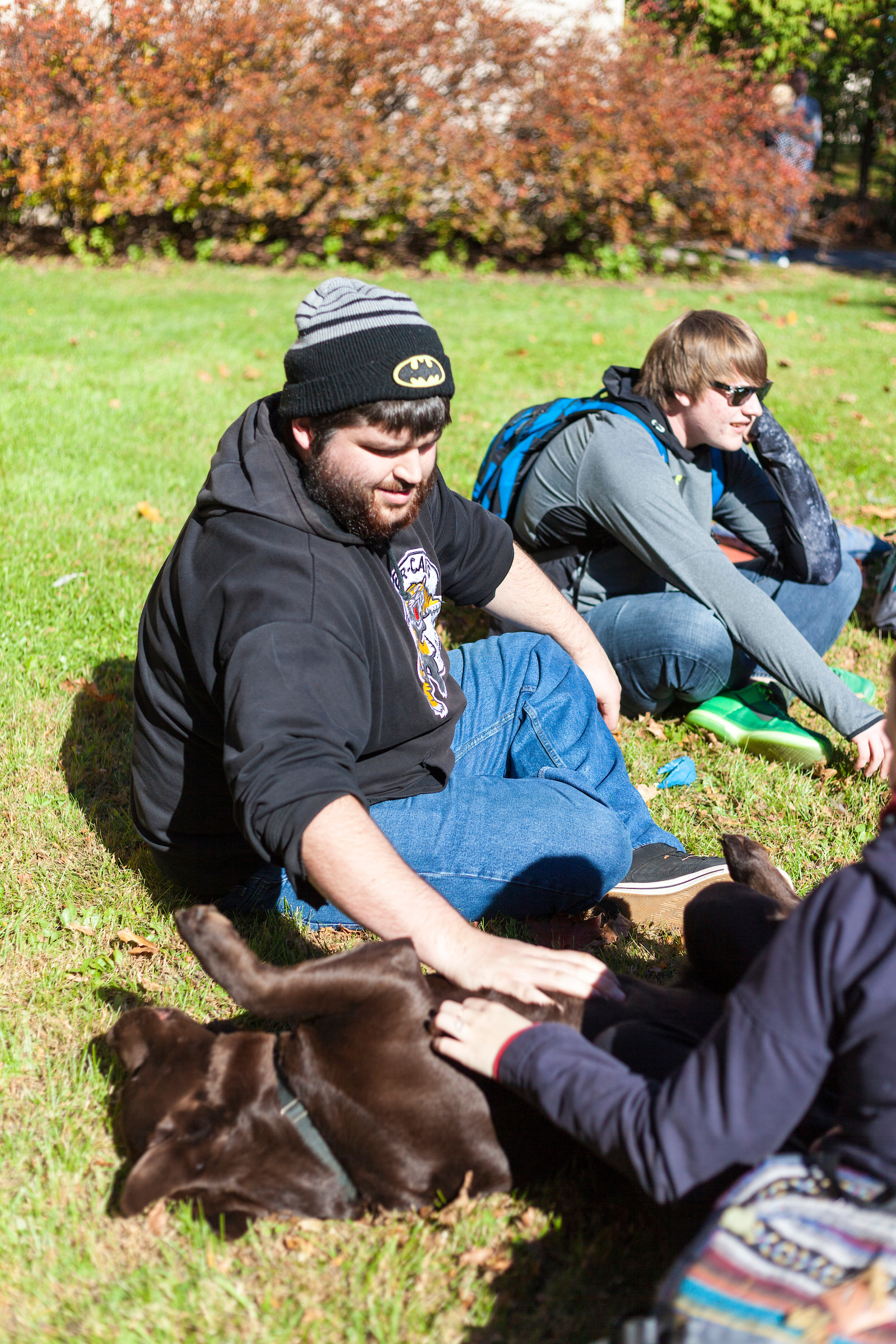Three students sit on the grass with a large brown dog. The dog is rolling in the grass and the students are petting him.