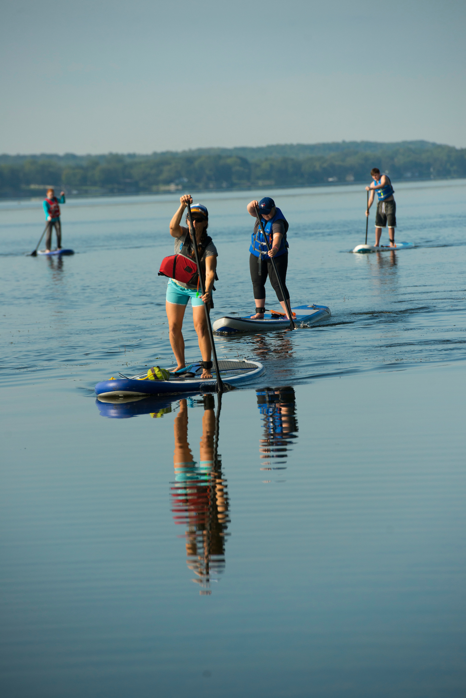 Four people in life jackets on stand-up paddle boards paddle across a blue lake, with green trees in the background.