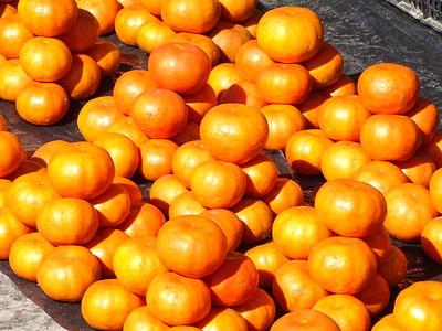 Mandarins for Sale - Xilitla - San Luis Potosi - Mexico