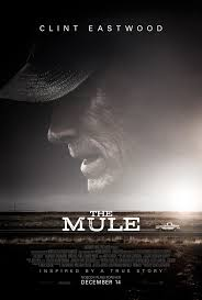 image of the mule