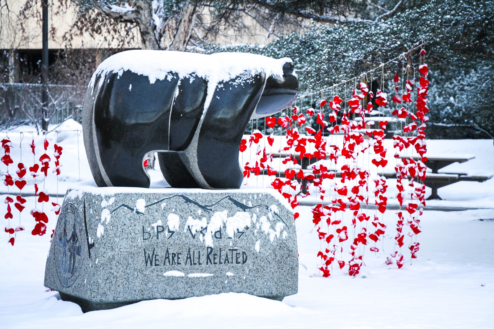 Photograph of the Sweetgrass Bear in U of A's Quad covered in snow, with red art piece in background.