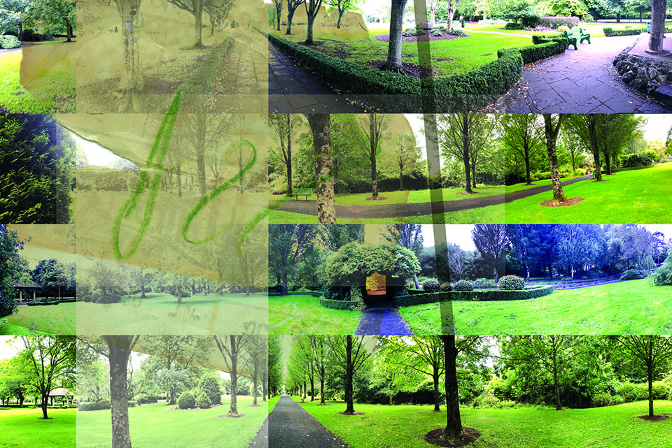 Grid of many photographs melding into each other showing paths through tress, branches and greenery