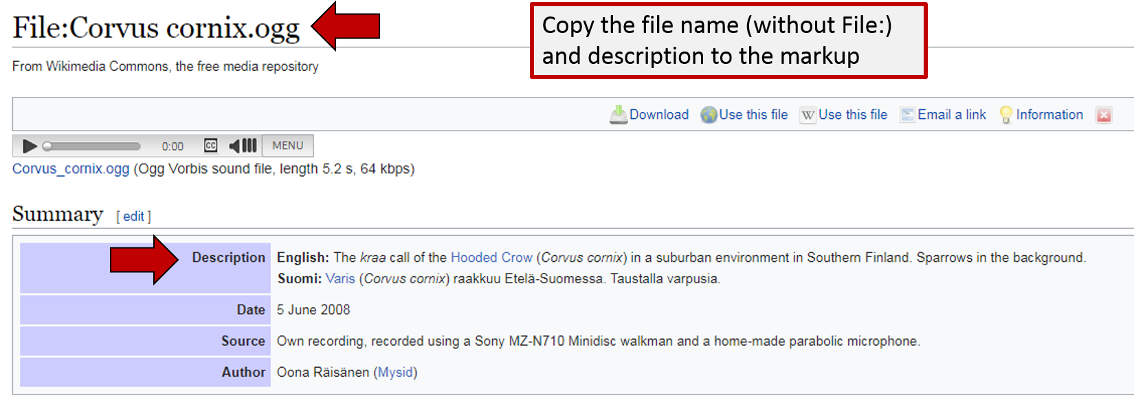 Screenshot of what to copy and paste from Wiki Commons