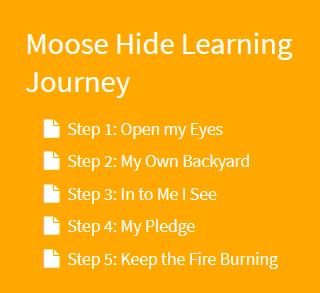 Moose Hide Learning Journey
