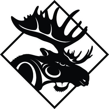 Moose Hide Campaign webiste
