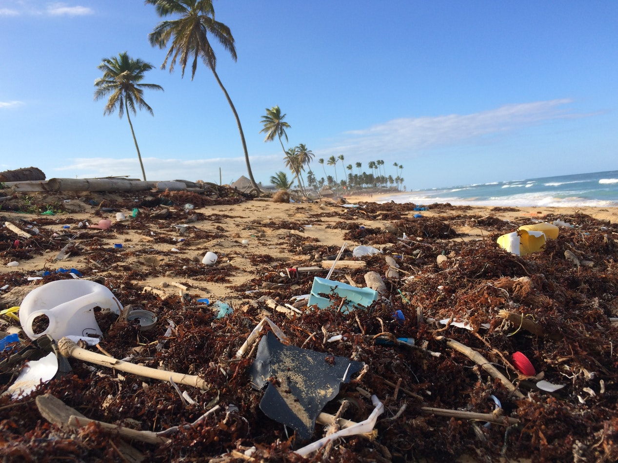 image showing plastic bottles and other litter on a beach