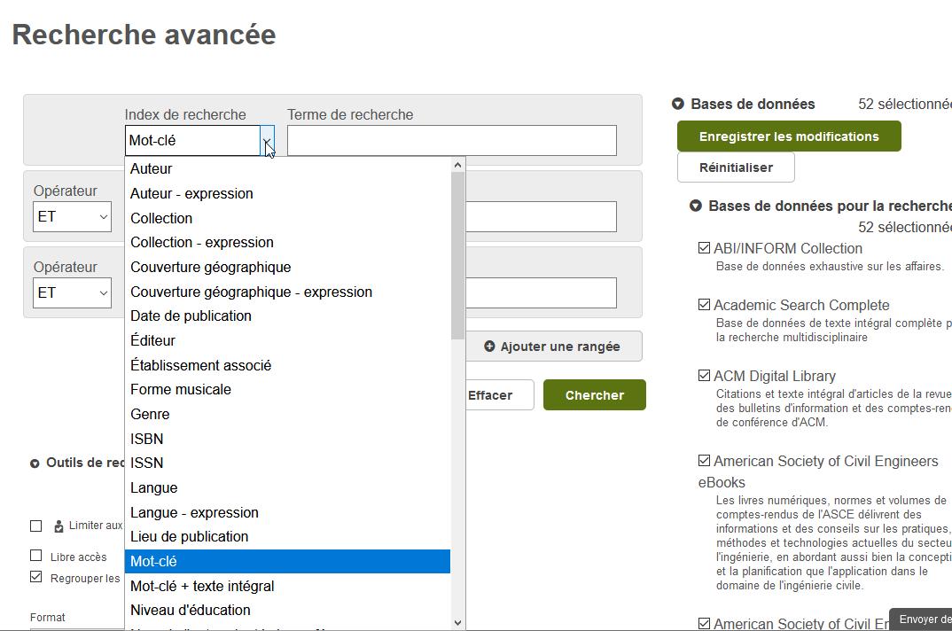 Capture d'écran de la recherche avancée montrant le formulaire ainsi que plusieurs index de recherche.