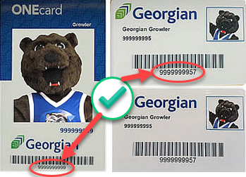 The Library UserID (10 digit number) is located beneath the barcode of your Georgian student/library card.