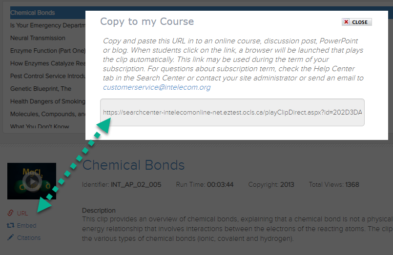 screenshot of Intelecom