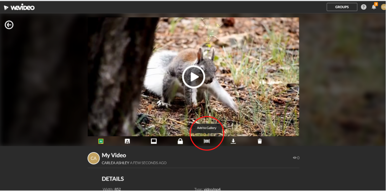 open an export and click the add to gallery button below the viewing screen