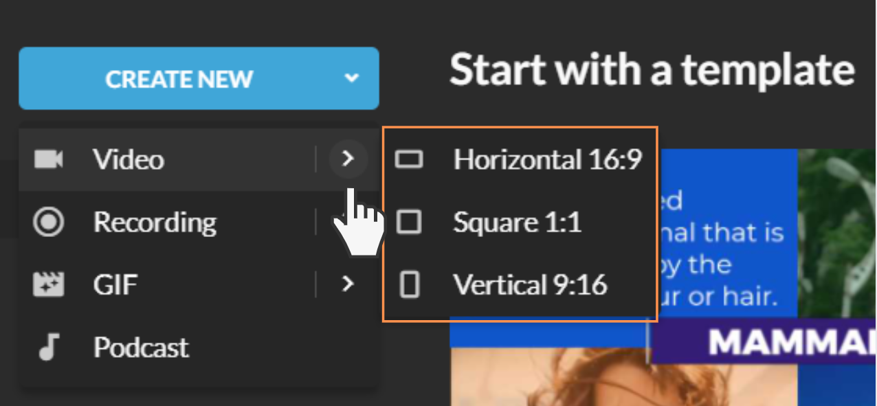 New video format options