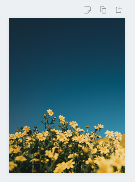 image of flowers as the design background