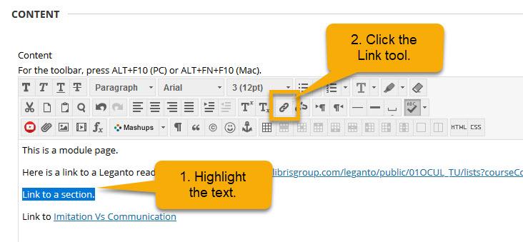screenshot of Blackboard text item